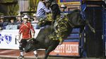 In this Tuesday, Sept. 12, 2017 photo, Parker Breding, of Edgar, Mont., rides the bull, Pistol Whipped, for 88.5 points in the PBR Classic of the Pendleton Round-Up on, in Pendleton, Ore.