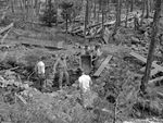 The Oregon Game Commission build a barrier downstream on Miller Creek in the 1950s to keep lamprey from returning to Miller Lake.