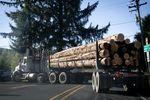 A truck carrying logs near Tillamook, Oregon.