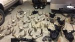 Twenty-seven deer heads and a bull elk were found at the Longview, Washington homes of William Haynes and Erik Martin, two suspects in a massive poaching ring in southwest Washington.