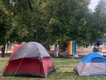 """Colorful tents are pitched in a grassy city park. In the background, a flag reads """"Black Lives Matter,"""" next to a rainbow pride flag."""