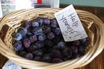 Plums for customers at the Whitehorse Cafe in Elgin