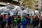 Thousands marched in Downtown Portland on Saturday at the March For Science.