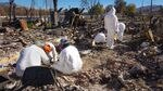 At a burned home in Phoenix, volunteer crews of archeologists search for two sets of cremains lost in the Almeda Fire.