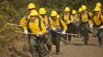 Firefighters respond to wildfires in the Umpqua National Forest in this Sept. 8, 2017 photo.