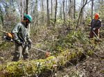 Aaron Blacklock, left, and Joel Conaway of Oregon's Wildfire Workforce Corps clear undergrowth in a Eugene community to help reduce the risk of wildfire in the neighborhood, March 30, 2021.