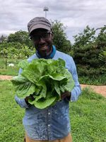 Malcolm Shabazz Hoover, co-founder and co-director of the Black Futures Farm in Southeast Portland, shows off some fresh greens.