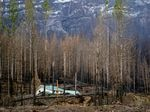 Mary Bradshaw's fire-hardened home in Elkhorn, Oregon, on Feb. 26, 2021. It was one of few that survived the Beachie Creek fire in the area.