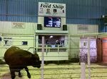 Sale volumes have doubled at the Lake Region Livestock auction amid the historic drought.