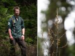 Two images are combined. On the left a man stands in a wooded area. On the right, a close-up shows part of a tree.