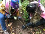 Friends of Trees crew leaders Shelly Bedell, left, and Felicia Frizado plant a tree on Portland Audubon property in Northwest Portland.
