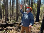 Man stands in forest looking and gesturing up at trees.