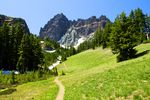 a slim dirt trail winds through a grassy meadow below the tree line before a craggy mountain peak