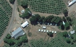 Farmworker camp near Talent, Oregon.  Rows of bunkhouse stand within 100 feet of surrounding orchards where trees are sprayed.