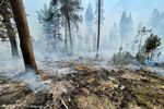 Charred ground smolders as smoke drifts across a forested landscape.