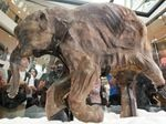 The body of Lyuba, a baby woolly mammoth that lived about 42,000 years ago on the Yamal Peninsular of Siberia, is exhibited in Hong Kong.
