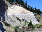 Tumalo tuff section near Tumalo State Park. Both layers were produced by the same eruption. The lower grey unit is the pumice, overlain by light tan pyroclastic flow deposit.