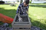 Ryan Parker, a student at Washington State University, sifts through the soil extracted from the dig.  He helped select dig sites after scanning the area with ground penetrating radar.