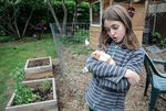 Sadie Stephens plays with her guinea pig in the backyard of their house in north Portland.