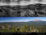 A comparison of the forest density on Mount Hood in 1933 and 2015.