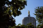 Sun glints off a goldent statue of a pioneer in this tree-framed closeup of the top of the Oregon Capitol building.