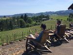 At Vidon Winery, visitors sip wine while looking out over fields of grapes in the Willamette Valley.