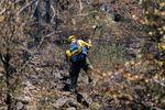 a firefighter wearing green pants and a yellow shirt swings a pulaski