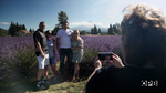 Visitors to Lavender Valley Farm in Parkdale snap an idyllic picture