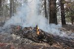 In this photo provided by the U.S. Forest Service, a log continues to burn Sunday after the surface Bootleg Fire has passed. Critically dry conditions make forest fuels, like large logs available to be consumed by the fire.