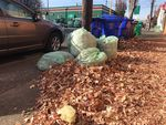 Bagged leaves and more fallen leaves waiting to be picked up on a Southeast Portland street.