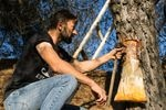 Giorgos Anagnostou shows how resin is collected from a pine tree that didn't burn down during last month's fires. Men in his village, Kourkouloi, in northern Evia, provided a large portion of Greece's resin production, which is used in everything from cosmetics to paint.