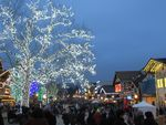Thousands of visitors have been pouring into Leavenworth despite the absence of the usual year-end festivals, tree lighting ceremony and indoor dining.