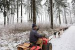 """Thad McCracken shouts directions on the trail. These sled dogs receive only verbal commands: """"gee"""" means right, """"haw"""" means left, and """"on by"""" means pass."""