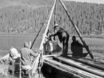 In the 1950s, the Oregon Game Commission dumped barrels of the pesticide toxaphene into Miller Lake to kill the lamprey — along with everything else. They then restocked the lake with game fish.