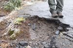 Mount Rainier's Alta Vista trail is filled with potholes.