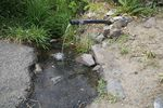 This natural spring on the Warm Springs reservation is a drinking water source for many tribal members. An elder allowed OPB to photograph it during a boil water notice, June 6, 2019.